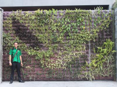 Residence at Demangan Baru, Yogyakarta