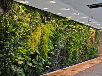 12 Keuntungan Vertical Garden