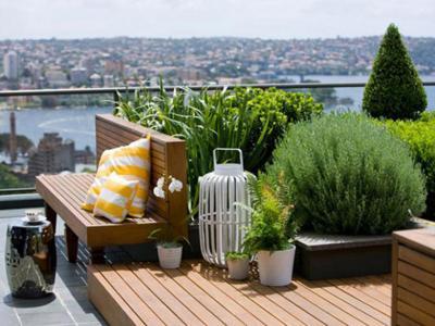 Roof Garden: Atap sebagai Solusi Taman di Lahan Terbatas