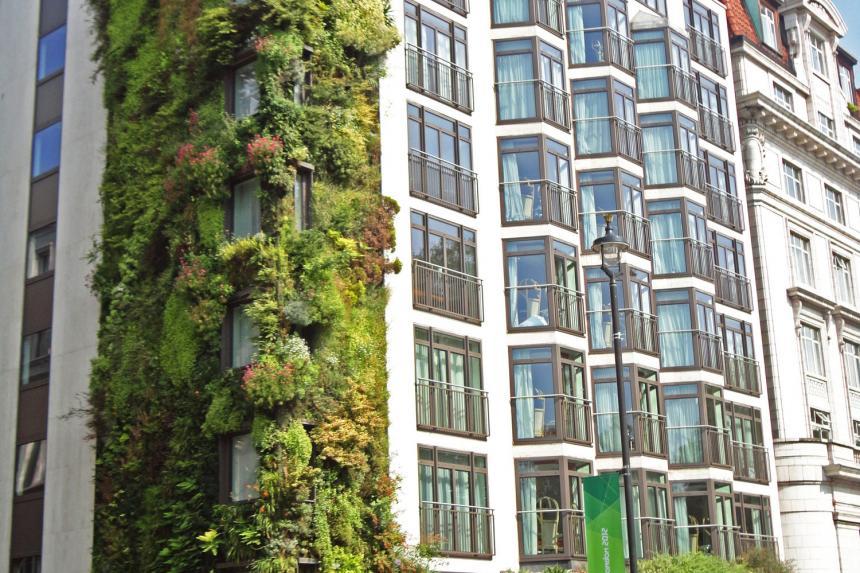 6 Vertical Garden Menakjubkan di Dunia